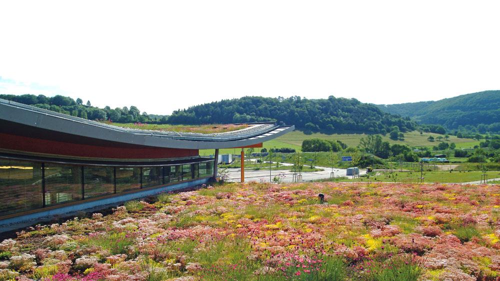 vaste toiture en végétalisation extensive au premier plan avec un autre bâtiment végétalisé à gauche, paysage de collines boisées à l'arrière plan.