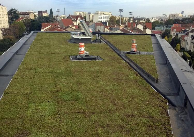 au premier plan une toiture plate étanchée en membrane EPDM puis végétalisée avec sortie de ventilation et puit de lumière, à l'arrière plan une zone urbaine.