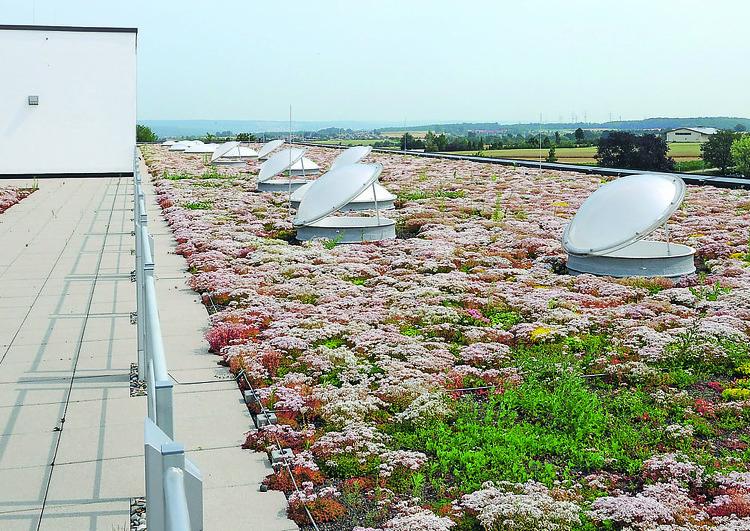 au premier plan une grande toiture plate végétalisée avec de nombreux puit de lumière ouverts, à l'arrière plan une zone rurale avec des champs