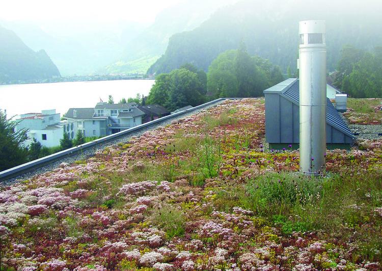 au premier plan toiture plate végétalisée avec sortie de ventilation et de conduit de cheminée, à l'arrière plan quelques maisons et un lac dans une région montagneuse.