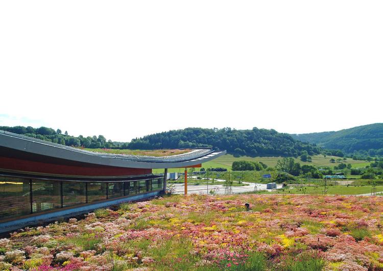 Au premier plan la végétalisation d'une toiture d'un bâtiment industriel, à l'arrière plan un paysage avec des champs et des bois.